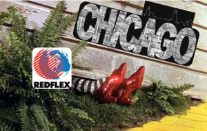 chicago crushes redflex